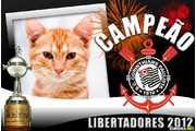 5511-Libertadores-2012