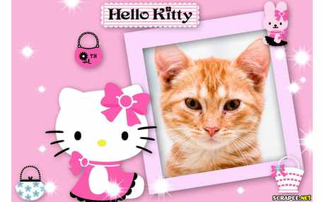5514-Hello-Kitty