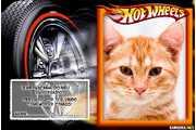 5520-Lembrancinha-do-Hot-Weels