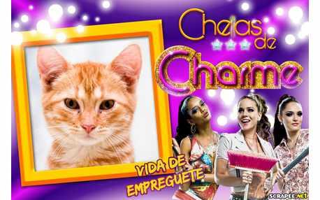Moldura - Cheias De Charme   Novela
