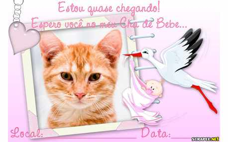 Moldura - Convite Cha De Bebe Menina