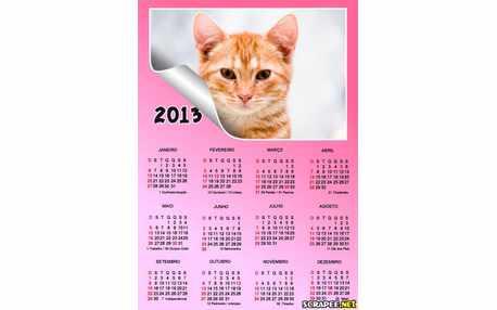 Moldura - Calendario 2013 Rosa