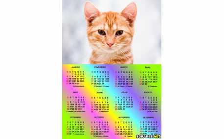 Moldura - Calendario 2013 Varias Cores