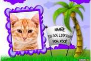 5616-Mae-eu-sou-Louca-por-Voce