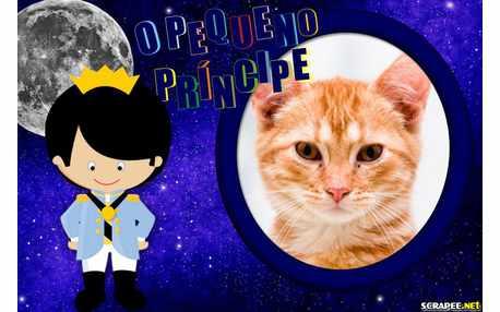 5625-Pequeno-Principe