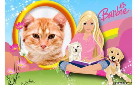 5651-Montagem-da-Barbie---Moldura-Barbie-Adulta