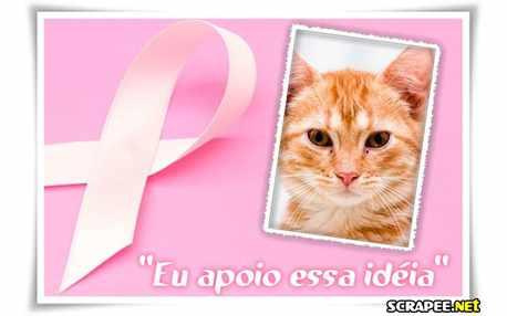 Moldura - Prevencao Ao Cancer De Mama