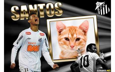 Moldura - Santos Neymar