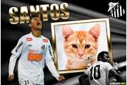 5728-Santos-Neymar