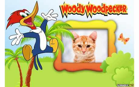 5729-Woody-Woodpecker