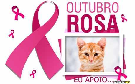 Moldura - Outubro Rosa Contra O Cancer De Mama