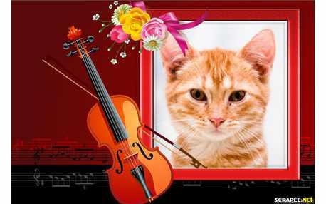 Moldura - Violino   Moldura Romantica
