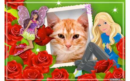Moldura - Barbie Jovem E Barbie Fadinha