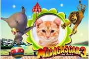 5846-Madagascar-3