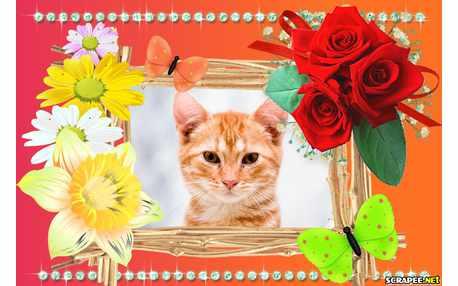 Moldura - Flores Lindas