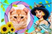 5857-Princesa-jasmine