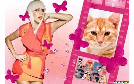 5864-Lady-Gaga