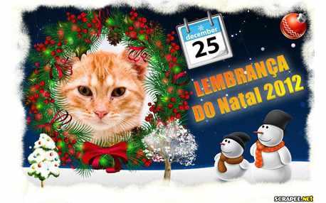 5866-Lembrancinha-para-Natal-2012