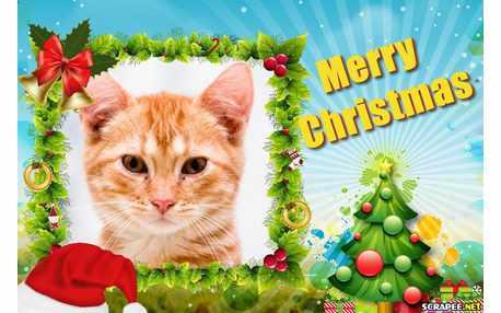 Moldura - Merry Christmas