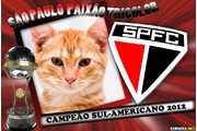 5873-Sao-Paulo-campeao-Sul-Americano-2012