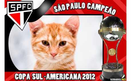 Moldura - Copa Sul Americana 2012