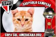 5876-Copa-Sul-Americana-2012