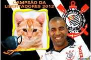5883-Corinthians-campeao-Libertadores-2012