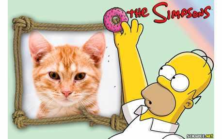 5939-Homer-Simpson-Pai