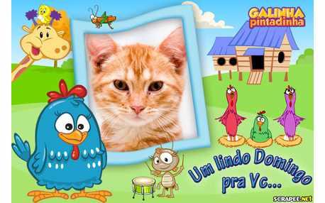 5954-Domingo---Galinha-Pintadinha