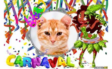 Moldura - Desfile De Carnaval