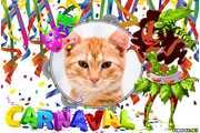 5956-Desfile-de-Carnaval
