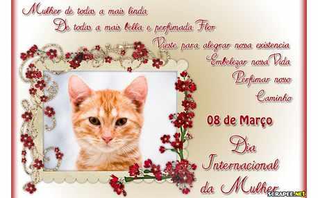 Moldura - Dia Internacional Da Mulher