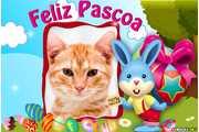 5988-Pascoa-Feliz