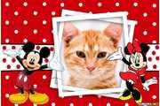 6001-Minnie-e-Mikey