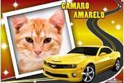6007-Camaro-Amarelo