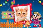 6065-Festa-Junina-de-sao-joao