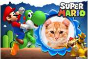6076-Super-Mario-Bros