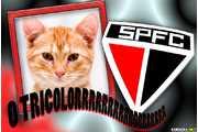 6088-Sao-Paulo-Tricolor