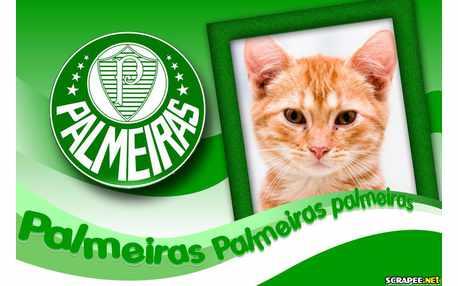 Moldura - Time Do Palmeiras