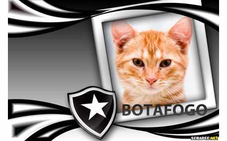 Moldura - Moldura Do Botafogo