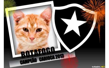 Moldura - Botafogo Campeao Carioca 2013