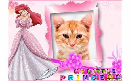 6097-My-Little-Princess