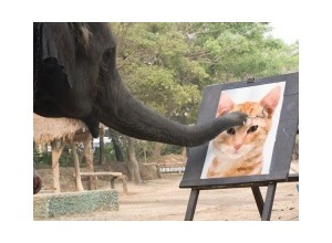 PhotomontagesElephant painting
