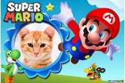 6110-Mario-Bross