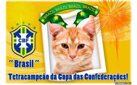 Moldura - Brasil Tetracampeao Da Copa Das Confederacoes
