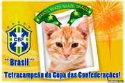 6118-Brasil-Tetracampeao-da-Copa-das-Confederacoes