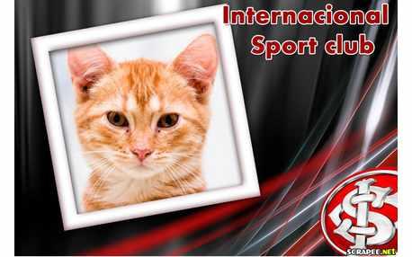 Moldura - Sport Club