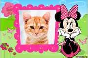 6154-Minnie-Rosa