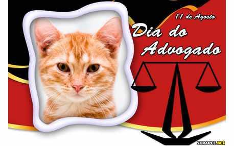 Moldura - Dia Do Advogado