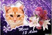 6177-Meus-15-Anos
